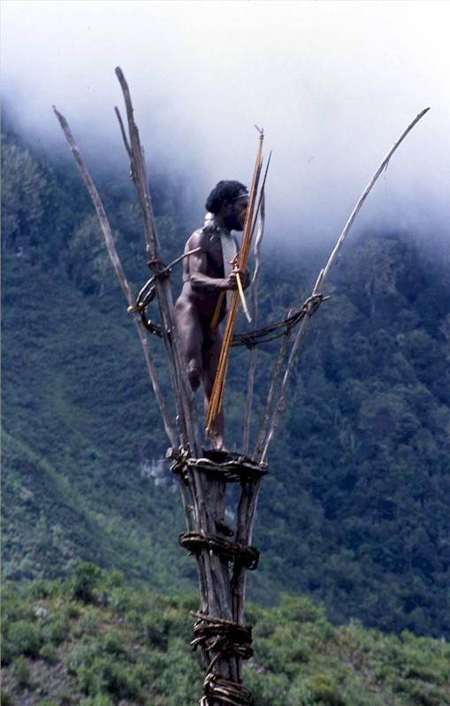 fotos de papua nueva guinea4